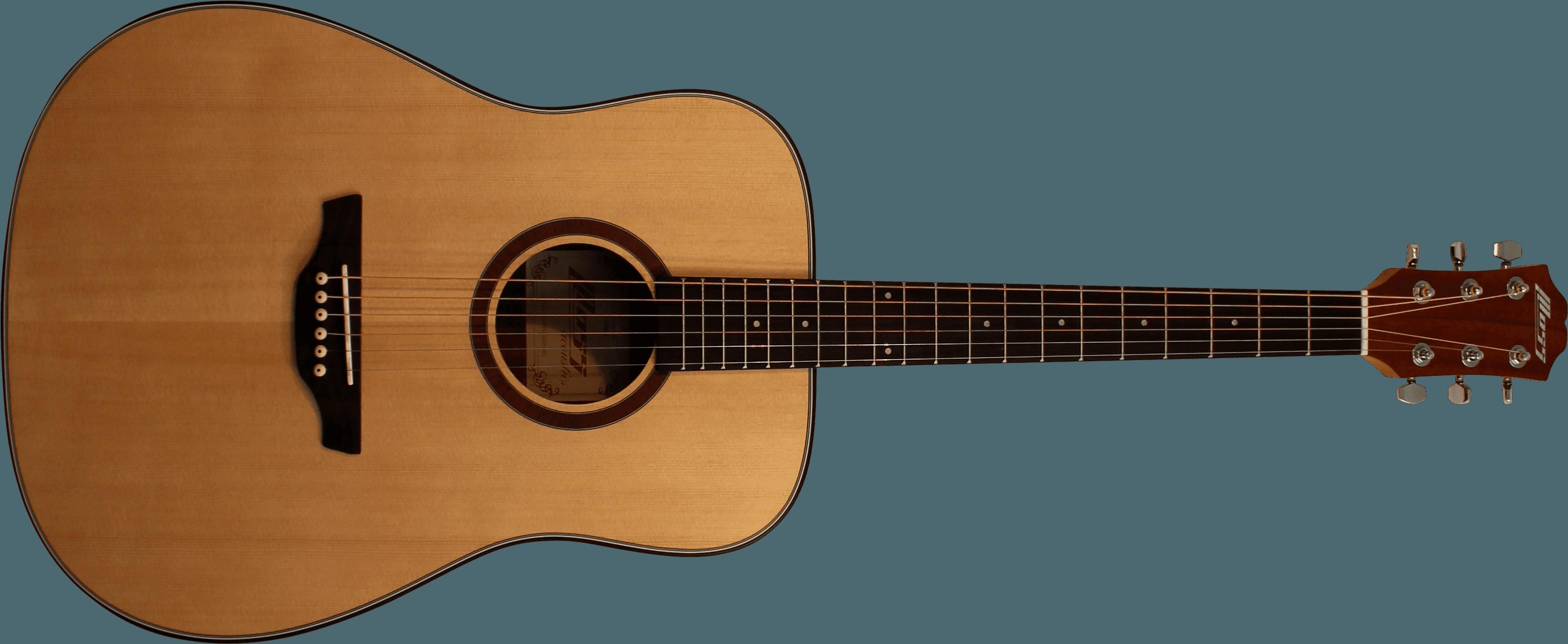 Moss Western Guitar F-888DX